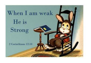 weak into strong rabbit